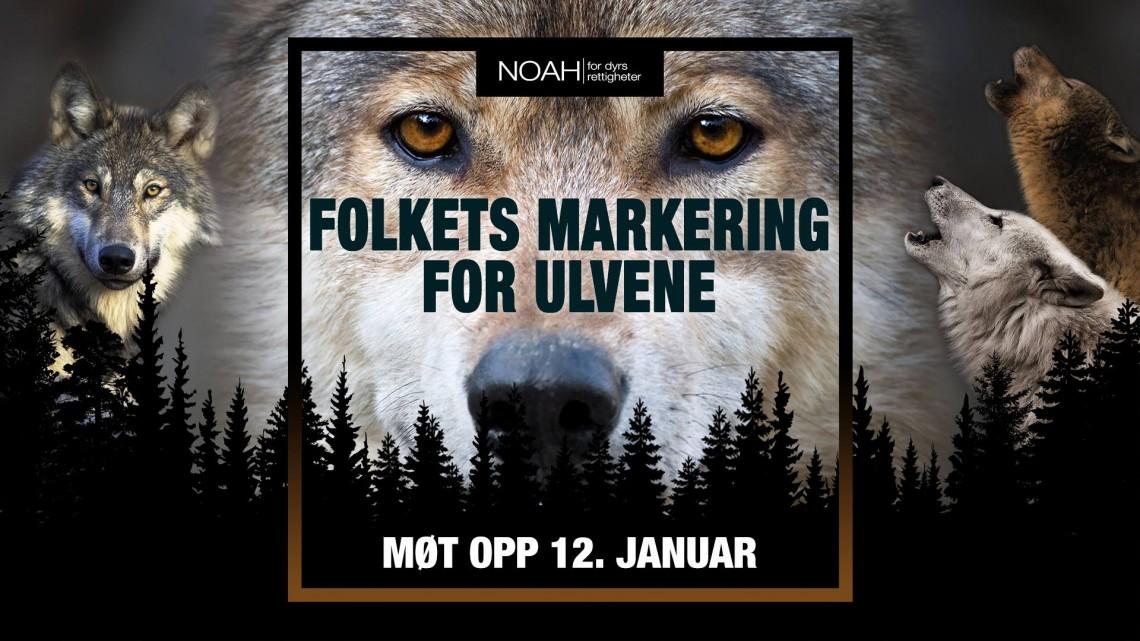 Folkets markering for ulvene